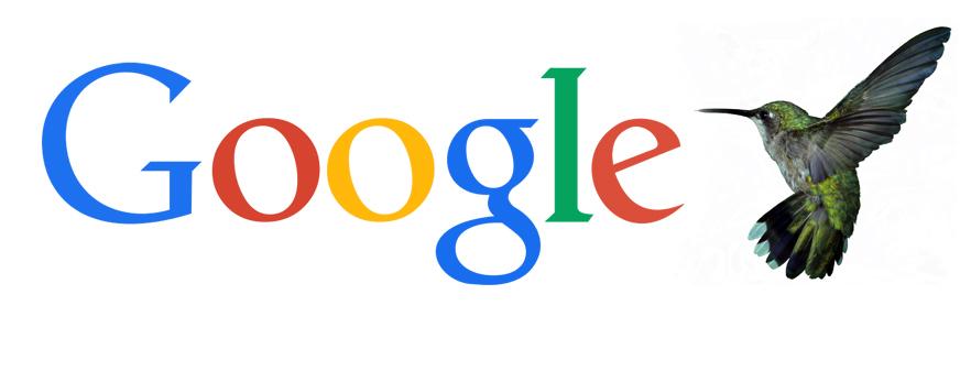 Google hummingbird banner