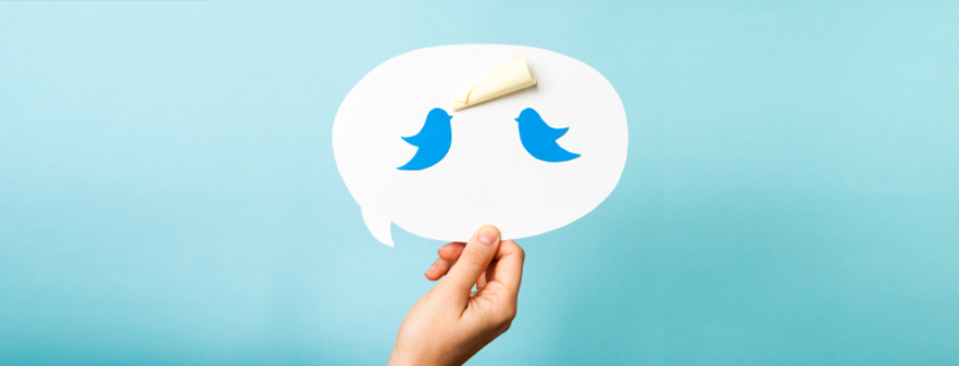 Twitter alternative banner